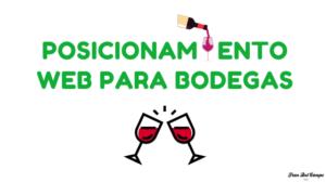 SEO y Marketing para bodegas de vino